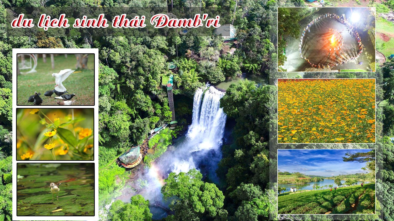 Du lịch sinh thái Đamb'ri